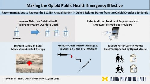 Opioid Harm - Burden visual abstract